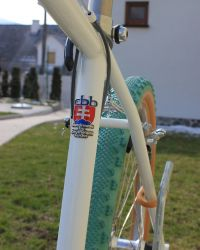 Slovakia Retro Bike Custom Headbadge